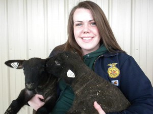 the importance of your collegiate ffa membership or collegiate 4-H
