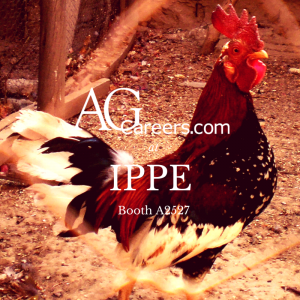 poultry jobs on AgCareers.com