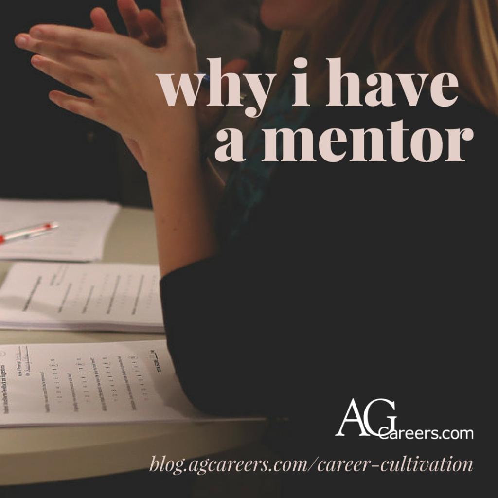 functional mentorship