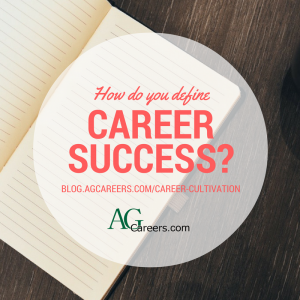 how do you define career success