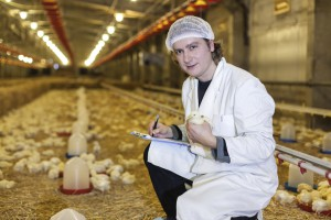 Animal Biotechnologist poultry science