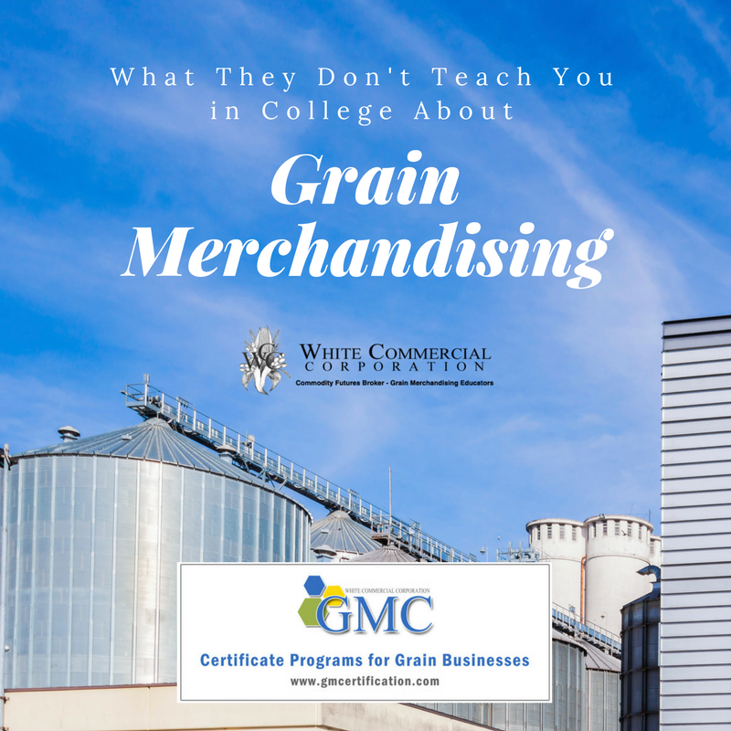 grain merchandising education