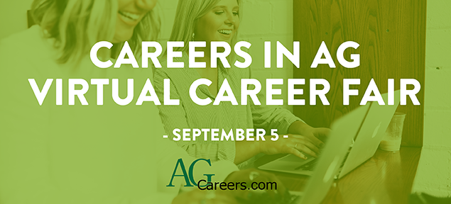 virtual career fair september 5