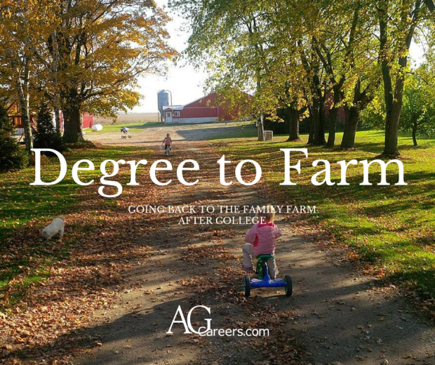 Back to the family farm after graduation