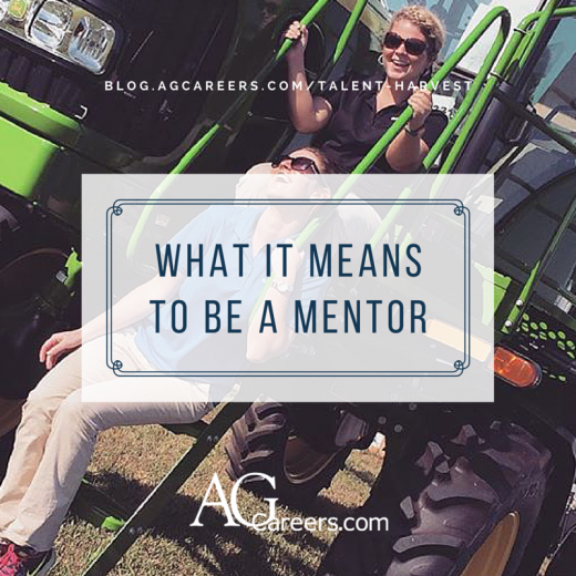 what it means to be a mentor
