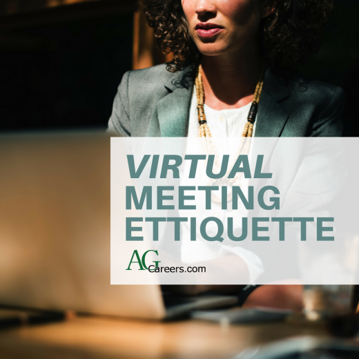 virtual meeting etiquette